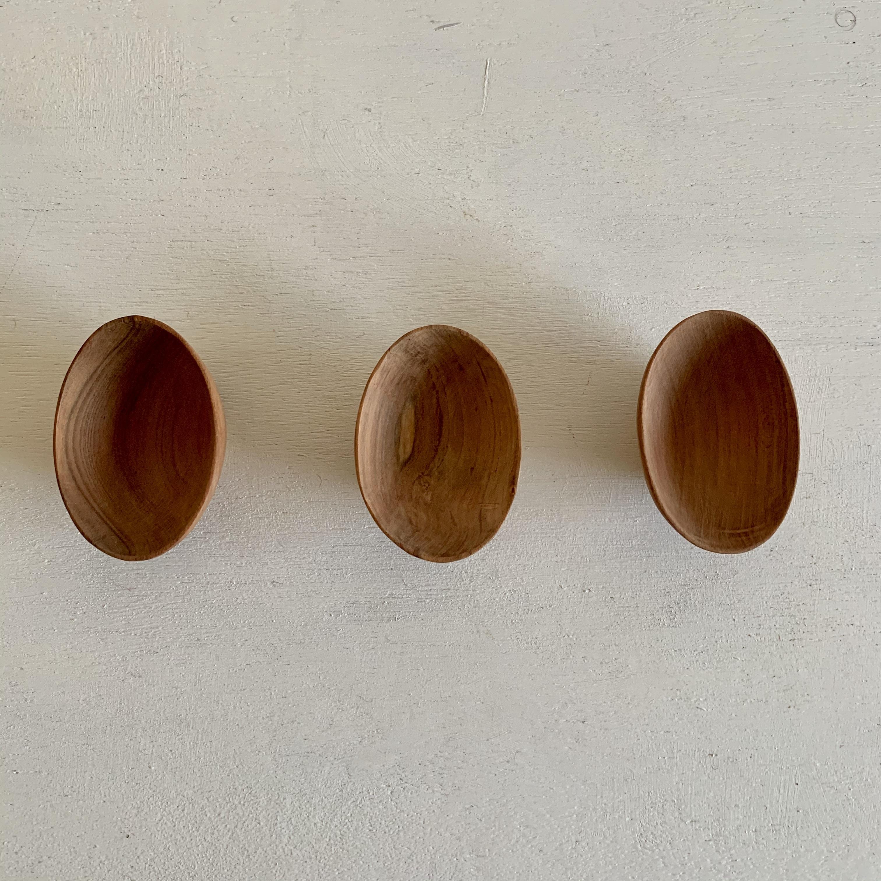アプリコットの木の楕円型豆皿
