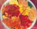 オータムリーブス[Autumn Leaves]