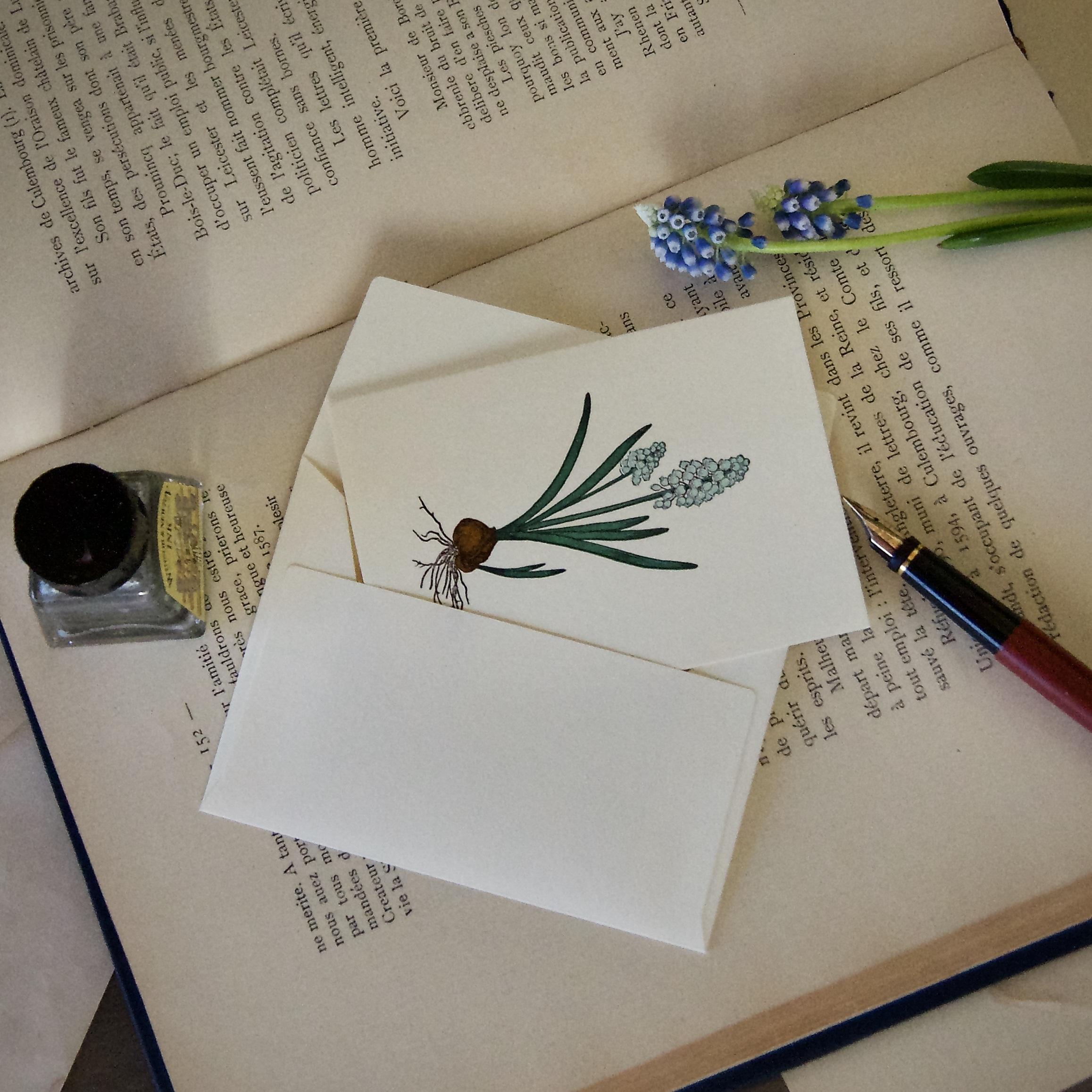 【カード 小】 ムスカリ / カード1枚+封筒1枚/活版印刷