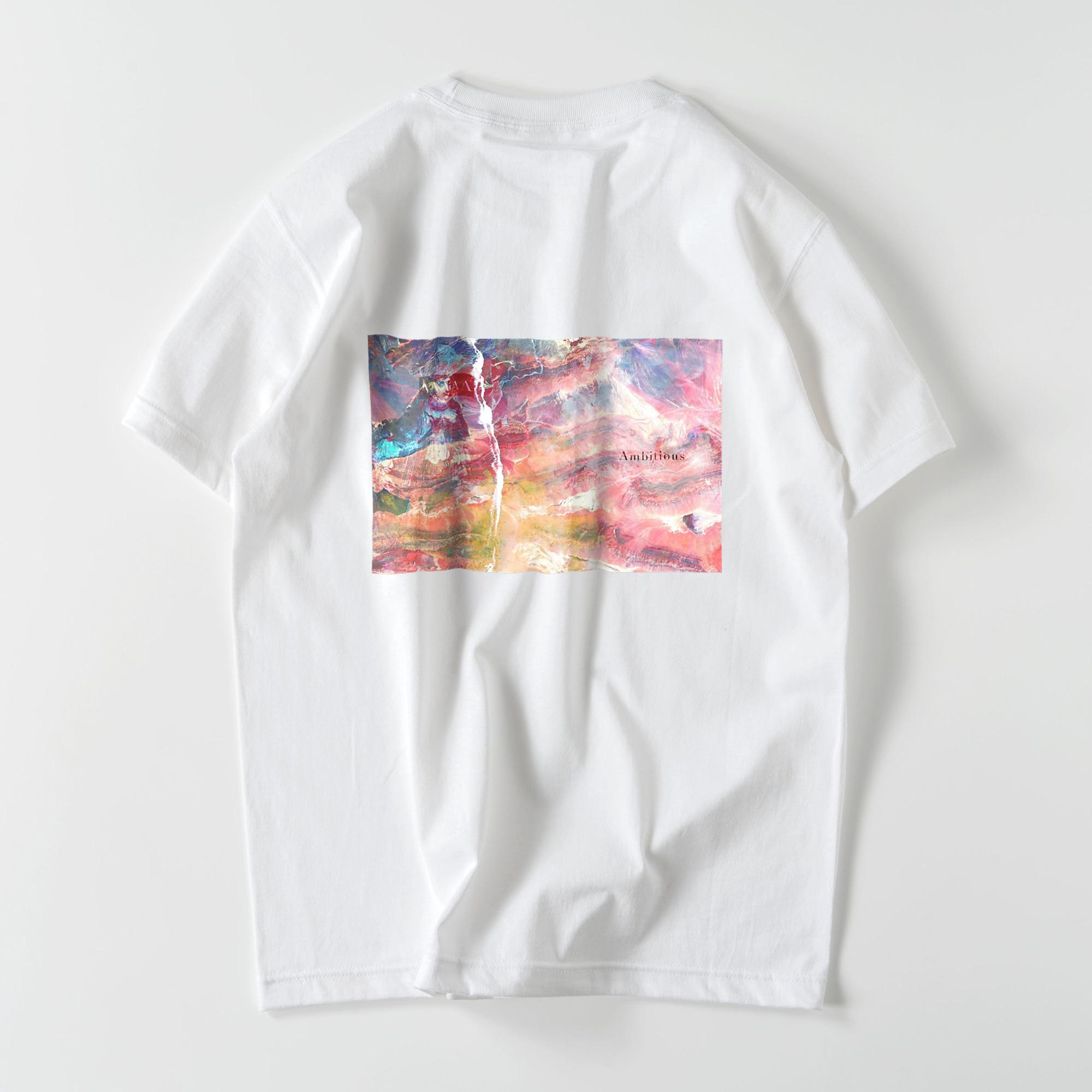 Ambitious スタンダードTシャツ /男女兼用(5色)
