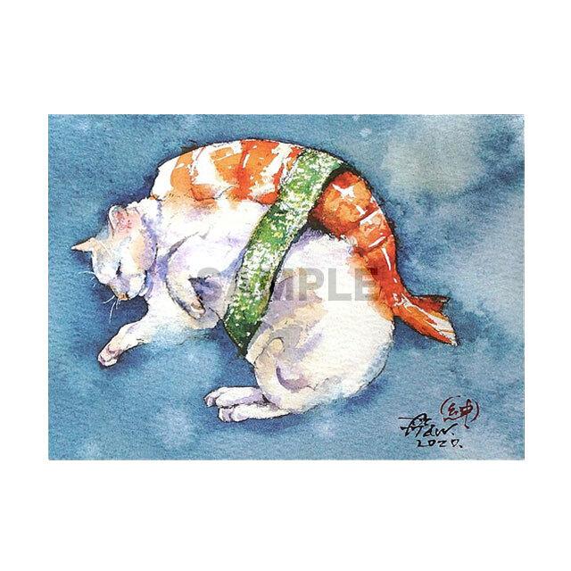 台湾ポストカード 水彩猫「猫飯蝦握寿司」