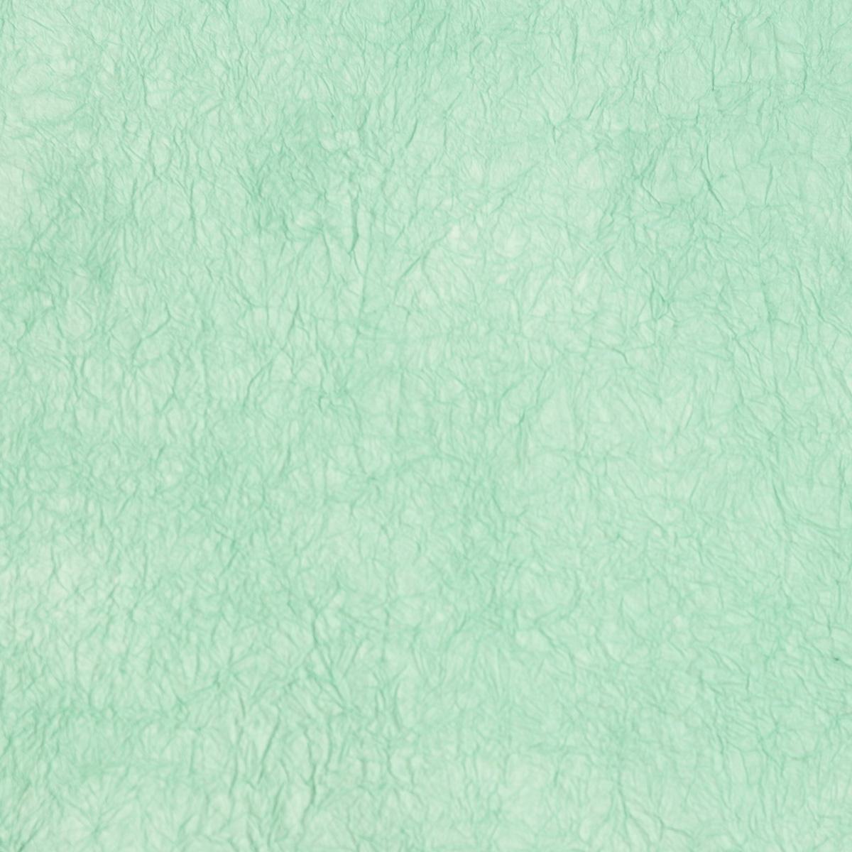王朝のそめいろ 厚口 42番 白藍色