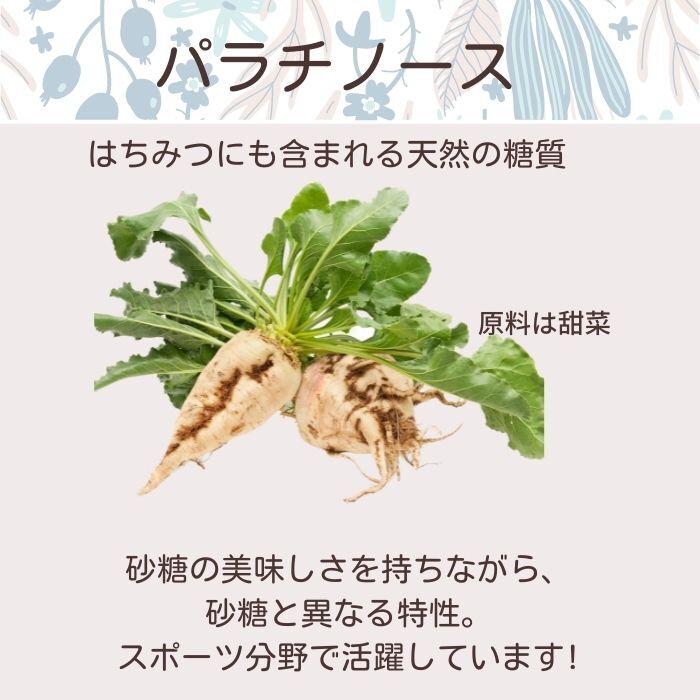 ソライナ・ビューティー・プロテイン:抹茶味【ソイプロテイン】