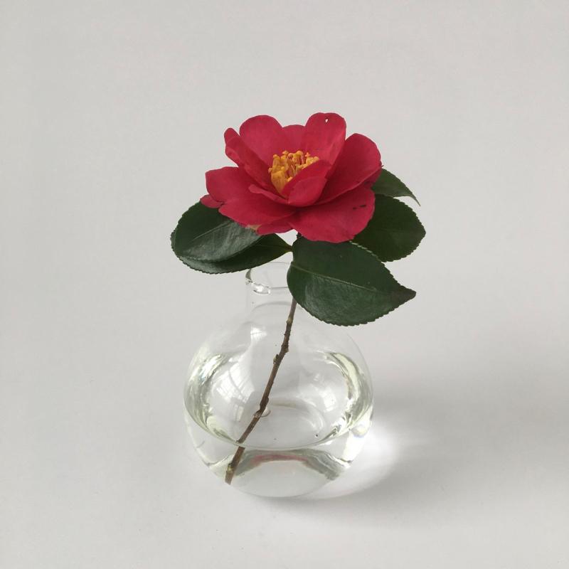 丸いガラスの花瓶(クリア) Round Glass Flower Vase (Clear)