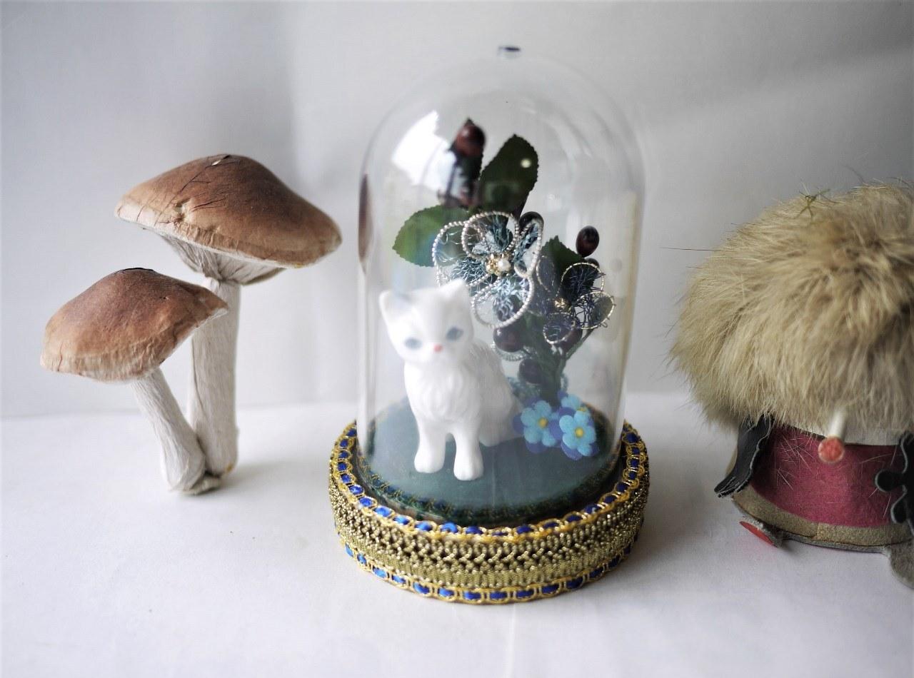 オーダー 白猫のドーム