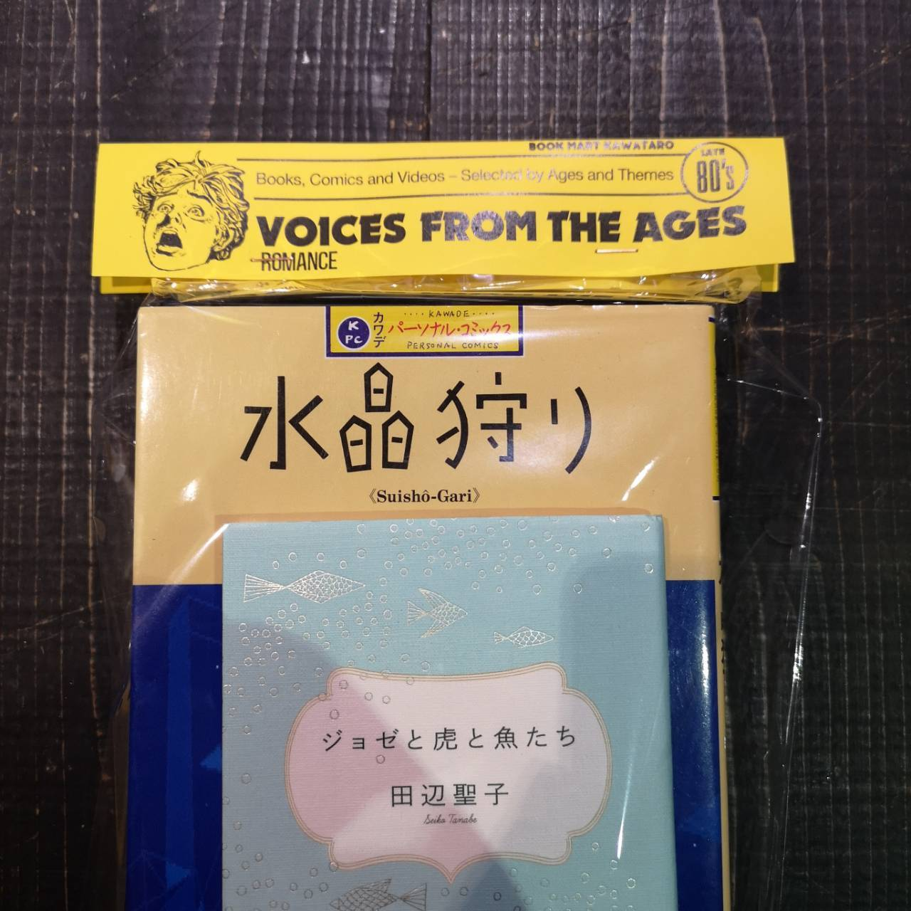 """VOICES FROM THE AGES - LATE 80's """"ROMANCE"""""""