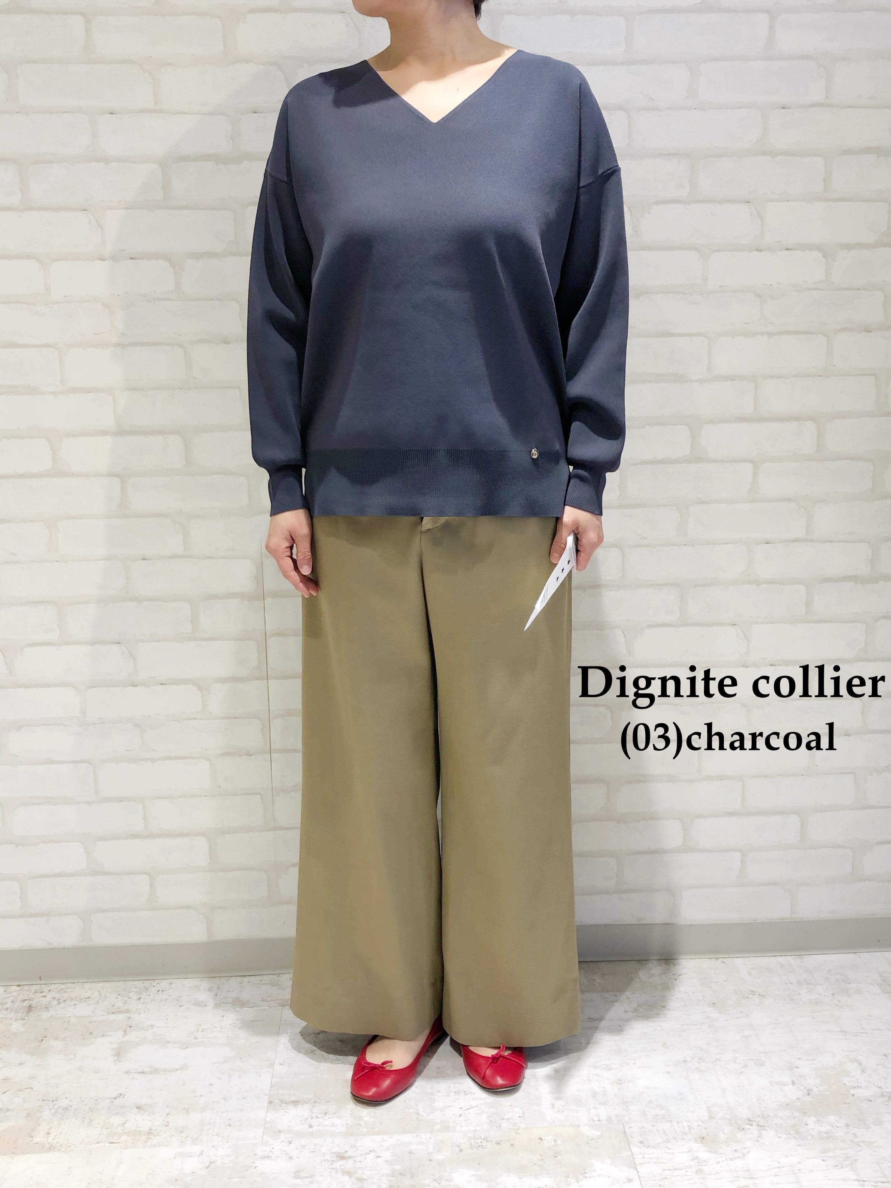 Dignite Collier/ウォッシャブルニット(Vネック)/LC-801107
