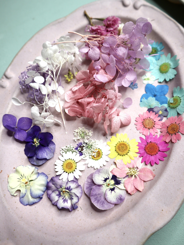 楕円シリコンモールド と押し花 【おひとり様分】