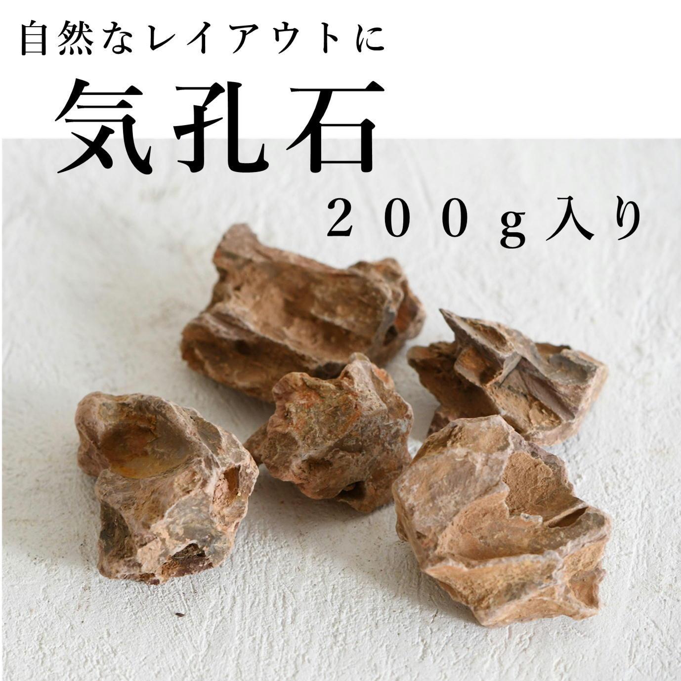 気孔石 200g入り【レイアウト用・着生用】