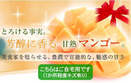 (D4)【静岡産】完熟マンゴー(ご自宅用)2kg