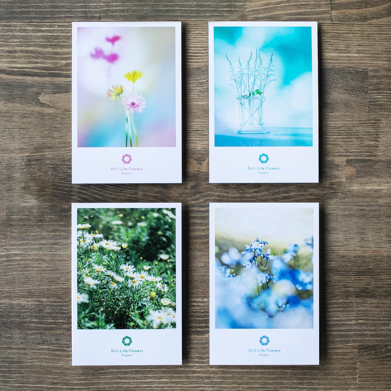 【#Still Life Flowers Project】ポストカード夢セット