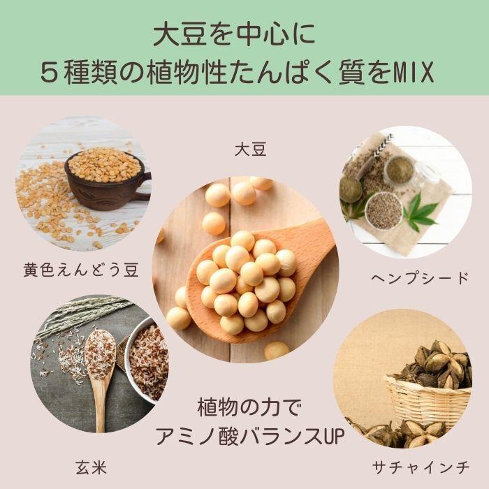 ソライナ・プロテイン:ベリー味【ソイプロテイン】小袋