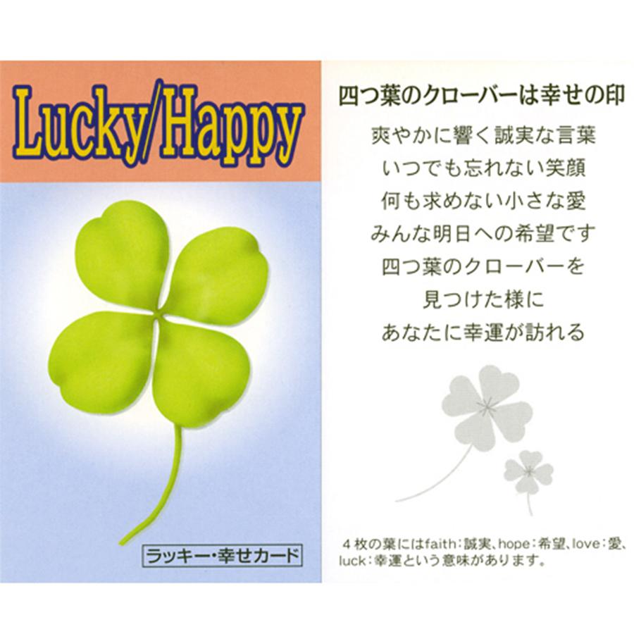【幸運・良縁・恋愛・金運・円満・長寿】四ツ葉クローバー幸運大招来・カラフルブレス(ラッキー・幸せカード付き)