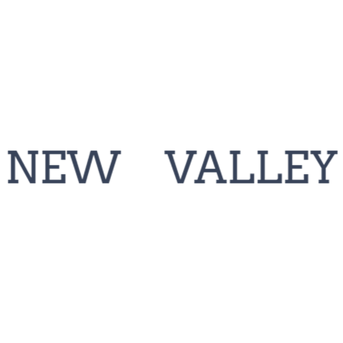 NEW VALLEY(ニューヴァレー)ワイン・通販・ナチュール・二子玉川 powered by BASE