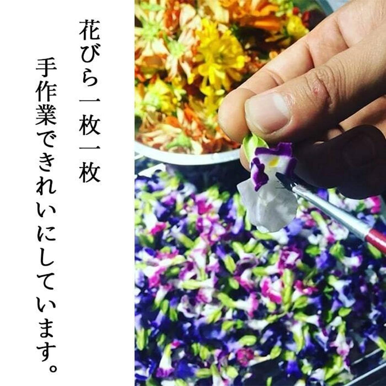 【87farm】食べられる ドライフラワー(ビオラ ヘブンリーブルー)