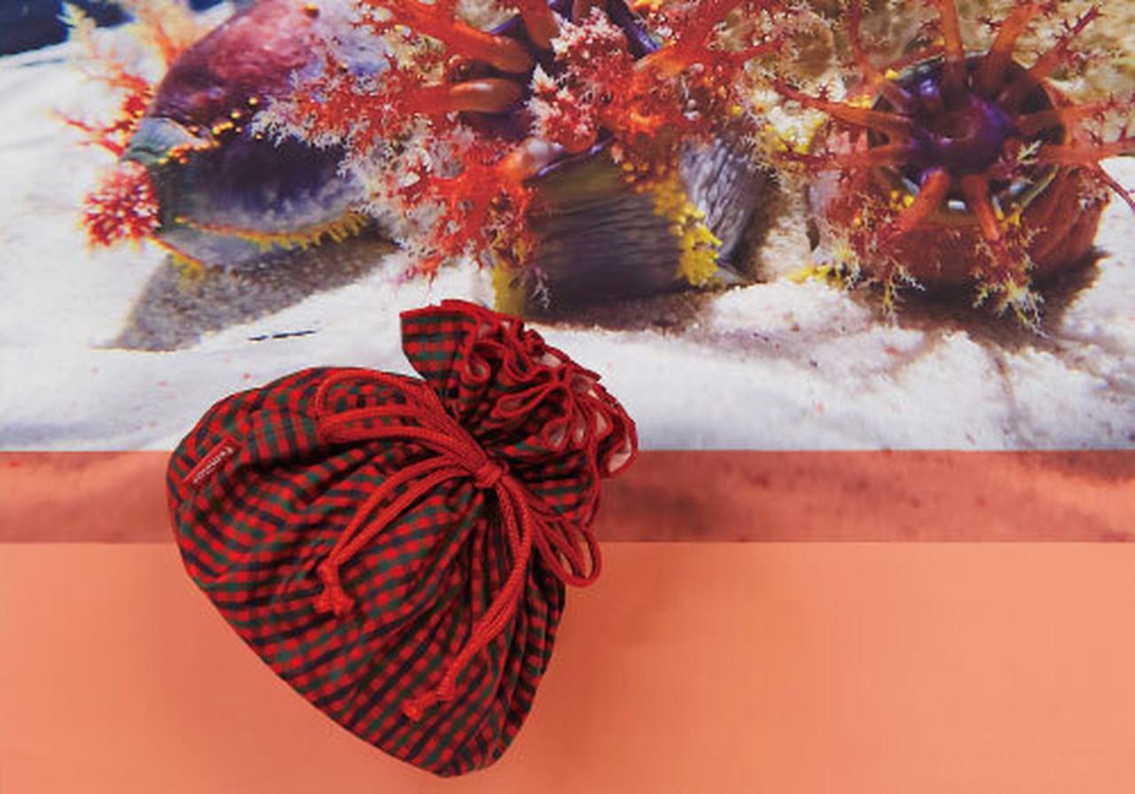 familiar × NIFREL アデヤカキンコの巾着(リバーシブル)