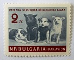 スペース・ドッグ / ブルガリア 1961