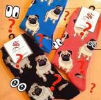 Pugs-Sock Smith(ソックスミス)