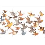 ポストカード 鳥(FO_PO_10144)
