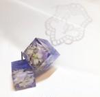 ドライ紫陽花(アジサイ)とっておきピアスorイヤリング♪