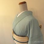 正絹紗 水色にあやめの小紋 単衣