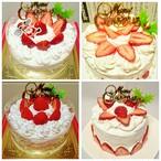 ★ワンコのクリスマスケーキ★