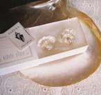 ガラスドーム巻貝