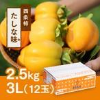 西条柿 3L 12玉(2.5kg) たしな味