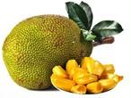 タイ冷凍ジャックフルーツ(Thailand Frozen Jack Fruit)500g