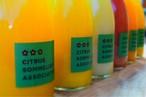 【6本 個性派おまかせセレクト】柑橘ジュースセット(おまかせ6種)