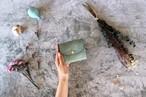 アラスカ_グリーン◆外装◆こども財布◆三つ折り