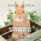 18日『D』又は『P』プラン 井川先生による写真撮影