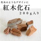 紅木化石 200g入り【レイアウト用・着生用】
