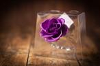【花の誕生日プレゼント】プリザーブドフラワー/Jewel Ring-誕生日カラー-2月