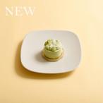 【2021新商品】サタルニア ダヌビオ プレート 21