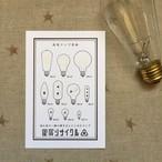 流星ランプ型録【白】