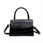 【Select】Mini Croco Bag