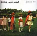 Gorky's Zygotic Mynci / diamond dew[中古7inch]