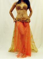 ベリーダンス衣装 ターキッシュスタイル ゴールド ブラベルト、スカート、飾り付