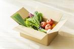 【野菜ソムリエ豊洲便】野菜ソムリエ詰め合わせセット 1500 ※全国発送