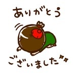 【F様専用】ご購入ページ