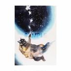 台湾ポストカード 水彩猫「月躍掌星」