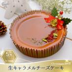 【2018クリスマスケーキ】生キャラメルチーズケーキ