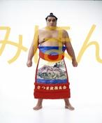 平成8年11月場所優勝 大関 武蔵丸光洋関(2回目の優勝)