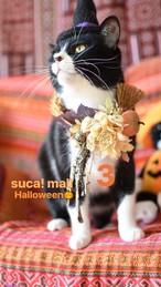 3*Halloween!! スカとおそろいリース☆