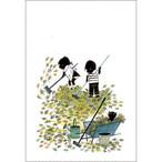 ポストカード 枯れ葉をおそうじ(FO_PO_10054)