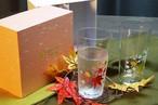 『 冷感 紅葉 タンブラーペアセット』贈り物 記念日 温度で変化 不思議な マジック ソフトドリンク アイスコーヒー ビール ハイボール 乾杯