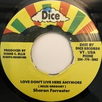 Sharon Forrester - Love Don't Live Here Anymore【7-20369】