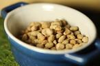 【国産納豆】フリーズドライ納豆