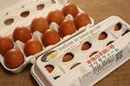 平飼い卵  20個              (10個入り箱 ×2)